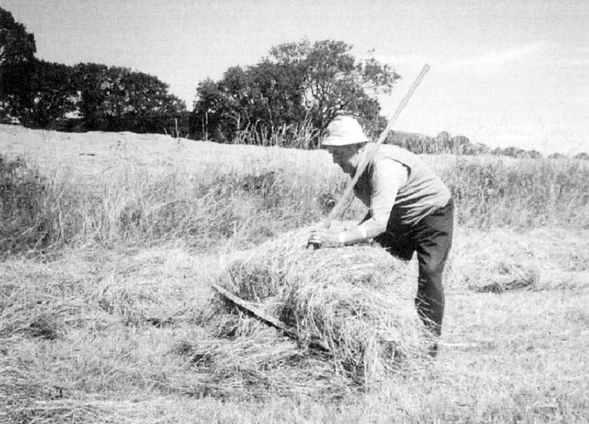 John Wilson of Yews rowing up hay by hand