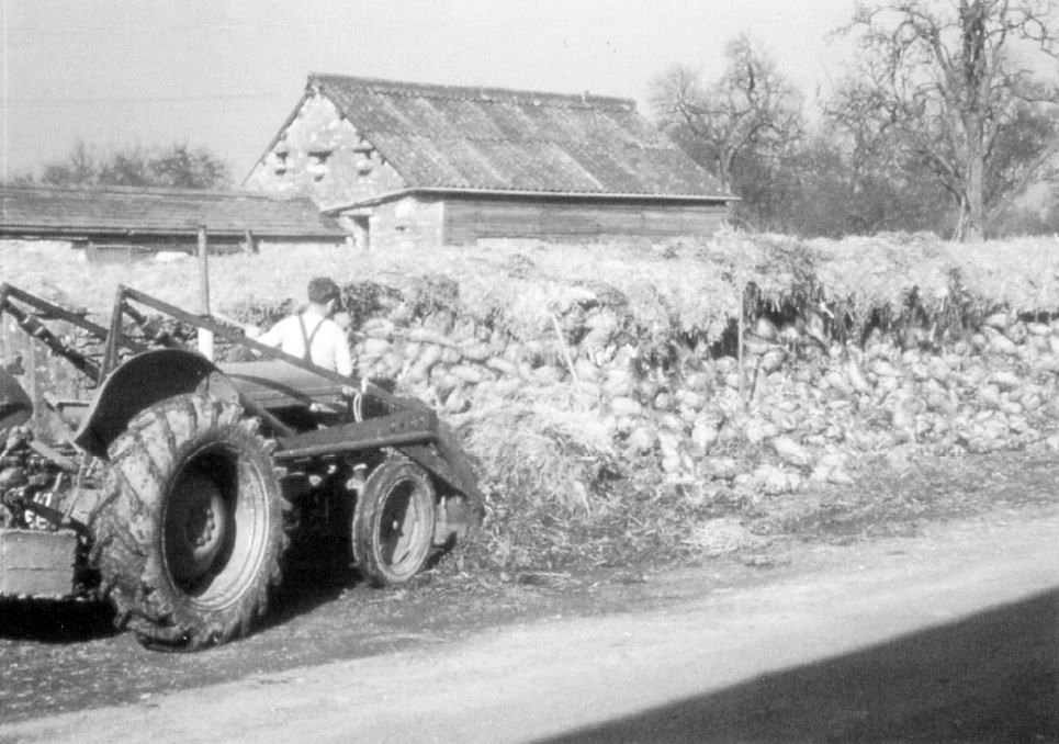 Herbert Park storing winter fuel at Dawson Fold